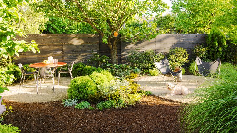 How to Create a Dog-Friendly Garden - Sunset Magazine ...