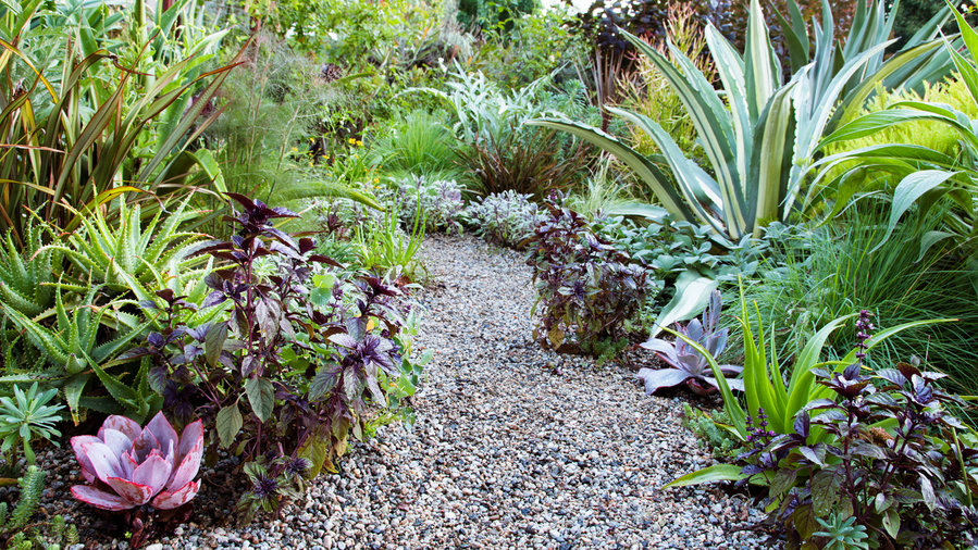 7 edible garden design ideas sunset magazine sunset magazine - Landscape Design Ideas Pictures