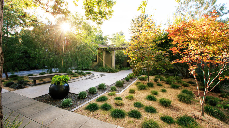 Low Maintenance Front Garden Ideas Curb Appeal
