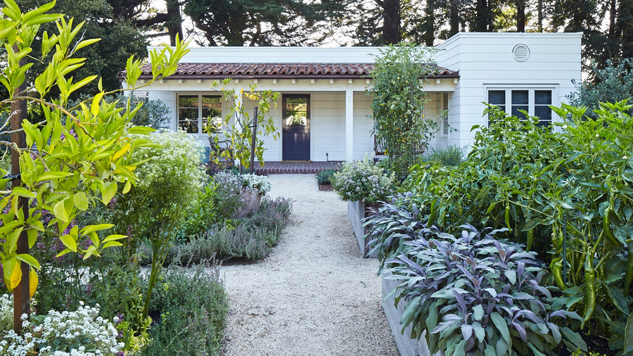 10 Outstanding Front Yard Edible Gardens   Sunset Magazine   Sunset Magazine