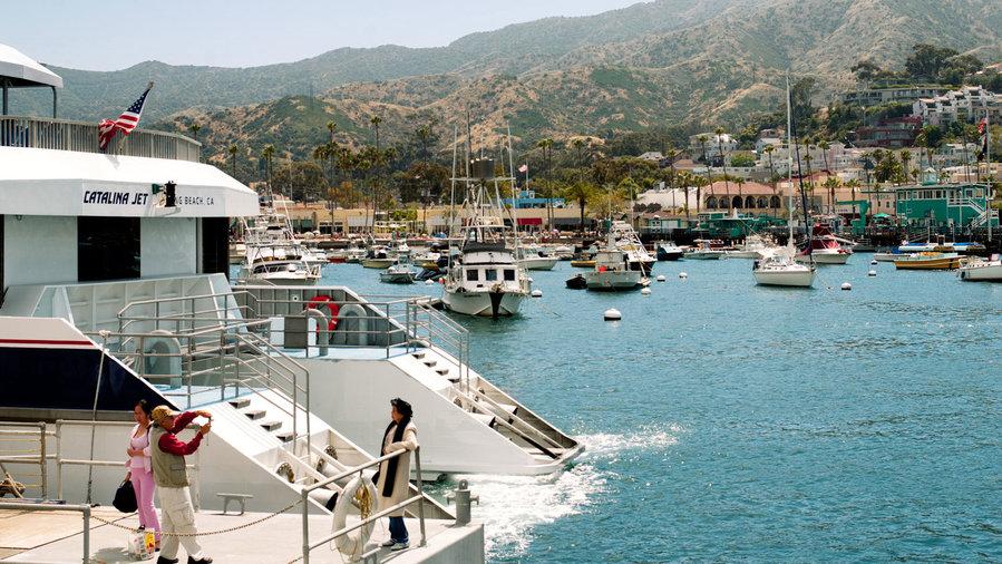 Catalina Sunset Tours